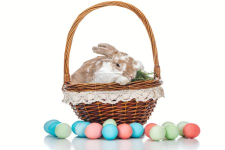 Photo for Painted easter eggs near wicker basket with cute bunny and grass on white - Royalty Free Image