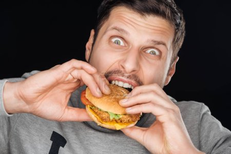 Photo for Emotional man eating tasty chicken burger while looking at camera isolated on black - Royalty Free Image