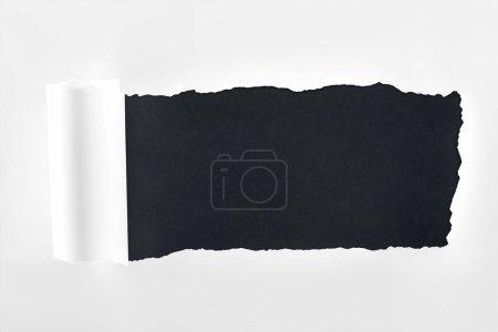 Photo pour Papier blanc texturé déchiré avec bord roulé sur fond noir - image libre de droit