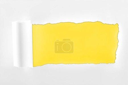 Photo pour Papier blanc texturé lambeaux avec bord roulé sur fond jaune - image libre de droit