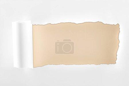 Photo pour Papier blanc texturé lambeaux avec bord roulé sur fond beige - image libre de droit