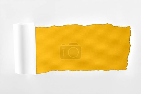 Photo for Tattered textured white paper with rolled edge on yellow background - Royalty Free Image