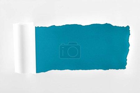 Photo pour Papier blanc texturé lambeaux avec bord roulé sur fond bleu profond - image libre de droit