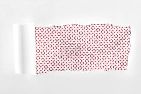 Photo pour Papier blanc lambeaux avec bord roulé sur fond pointillé rose - image libre de droit