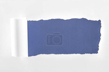 Photo pour Papier blanc texturé Ragged avec bord roulé sur fond bleu - image libre de droit