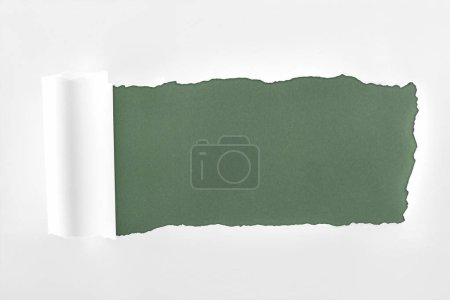 Foto de Papel blanco con textura irregular con borde enrollado sobre fondo verde oscuro - Imagen libre de derechos