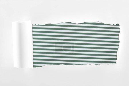 Photo pour Papier blanc texturé déchiqueté avec bord roulé sur fond rayé vert - image libre de droit