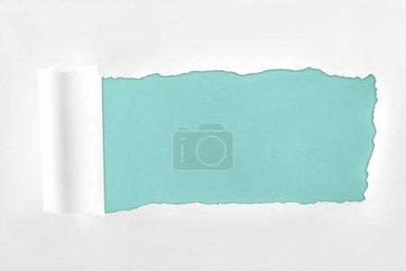 Photo pour Papier blanc texturé Ragged avec bord roulé sur fond bleu clair - image libre de droit