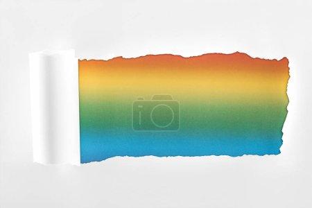 Photo pour Papier blanc texturé déchiré avec bord roulé sur fond multicolore - image libre de droit