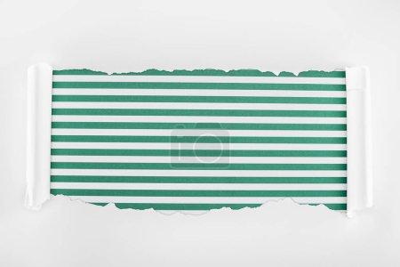 Foto de Papel blanco con textura irregular con bordes rizados en fondo verde rayado - Imagen libre de derechos