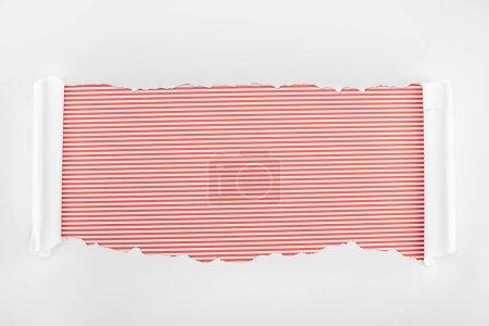 Photo pour Papier texturé blanc déchiré avec bords de courbure sur fond rayé rouge - image libre de droit