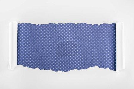 Photo pour Papier texturé blanc déchiré avec bords bouclés sur fond violet pointillé - image libre de droit