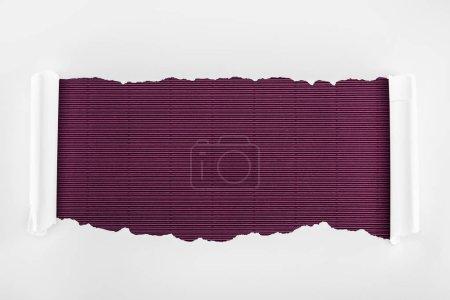 Foto de Papel con textura blanca rasgada con bordes de curvatura en fondo morado rayado - Imagen libre de derechos