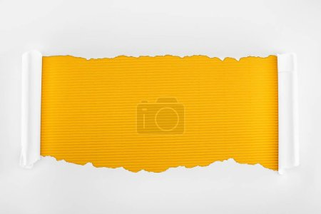 Photo for Ripped white textured paper with curl edges on yellow striped background - Royalty Free Image