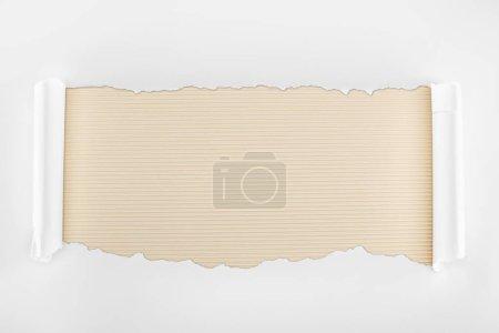 Photo pour Papier texturé blanc déchiré avec bords de courbure sur fond rayé Ivoire - image libre de droit