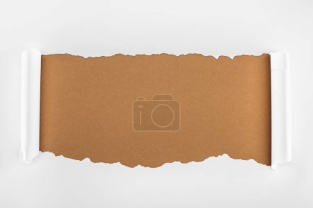 Photo for Ripped white textured paper with curl edges on brown background - Royalty Free Image
