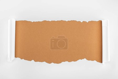 Photo for Ripped white paper with curl edges on brown background - Royalty Free Image