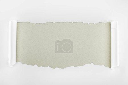 Photo pour Papier texturé blanc déchiré avec bords bouclés sur fond gris - image libre de droit
