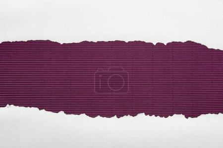 Foto de Papel con textura blanca arrancó con el espacio de copia en fondo rayado púrpura - Imagen libre de derechos