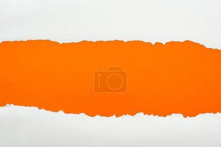 Photo pour Papier texturé blanc déchiré avec espace de copie sur fond orange - image libre de droit