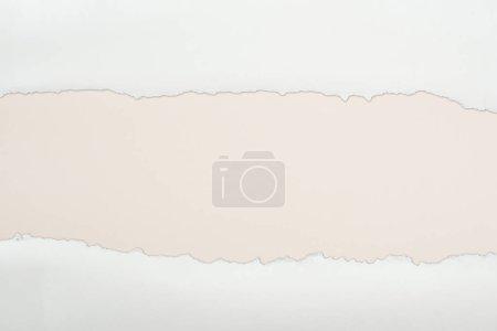 Photo pour Papier texturé blanc déchiré avec espace de copie sur fond Ivoire - image libre de droit