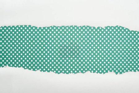 Photo pour Papier texturé blanc déchiré avec espace de copie sur fond vert à pois - image libre de droit