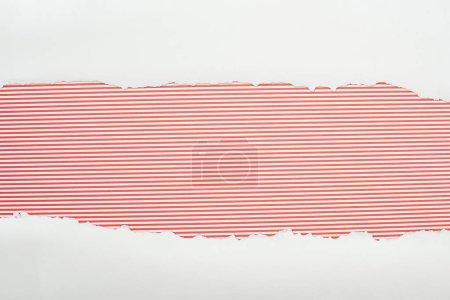 Photo pour Papier texturé blanc déchiré avec espace de copie sur fond rayé rouge - image libre de droit