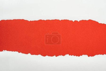 Foto de Papel con textura blanca rasgada con espacio de copia en fondo rojo - Imagen libre de derechos