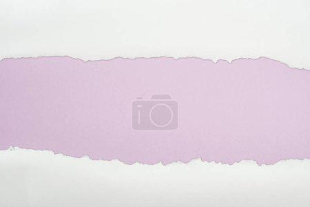 Foto de Papel con textura blanca arrancó con el espacio de copia sobre fondo púrpura claro - Imagen libre de derechos