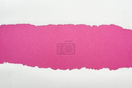 Photo pour Papier texturé blanc déchiré avec l'espace de copie sur le fond cramoisi - image libre de droit