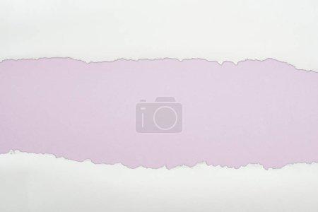 Photo pour Papier texturé blanc Ragged avec espace de copie sur fond violet clair - image libre de droit