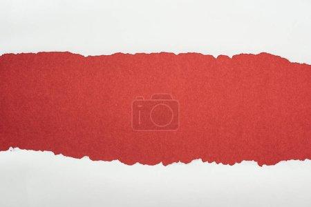Photo pour Papier texturé blanc Ragged avec espace de copie sur fond Bordeaux - image libre de droit