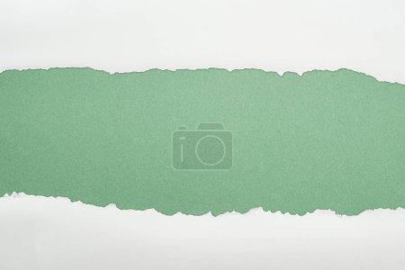Photo pour Papier texturé blanc Ragged avec espace de copie sur fond vert - image libre de droit