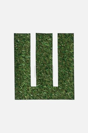 Photo for Top view of letter from cyrillic alphabet made of green grass isolated on white - Royalty Free Image