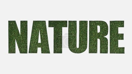 top view of cut out nature lettering on green grass background isolated on white