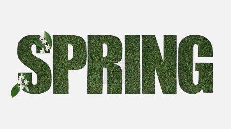 Photo pour Vue de dessus du lettrage de printemps découpé sur fond d'herbe verte avec des fleurs et des feuilles isolées sur blanc - image libre de droit