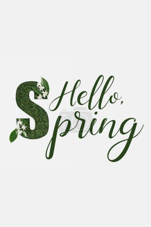 Photo for Top view of hello spring lettering with green fresh leaves and flowers isolated on white - Royalty Free Image