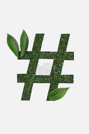 Foto de Vista superior de corte signo hashtag sobre fondo verde hierba con hojas aisladas en blanco - Imagen libre de derechos