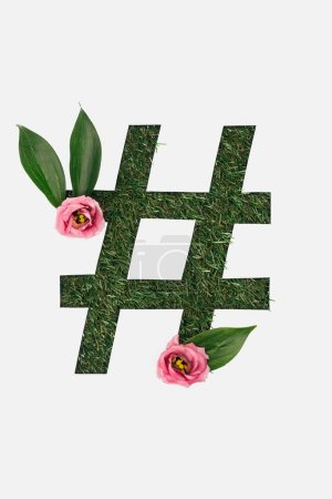 top view of cut out hashtag sign on green grass background with leaves and pink peonies isolated on white