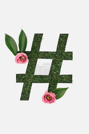Photo pour Vue de dessus de découpe de hashtag signe sur fond d'herbe verte avec des feuilles et des pivoines roses isolés sur blanc - image libre de droit