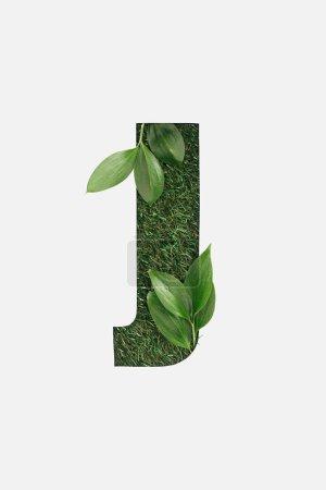 Photo pour Vue de dessus de découpe de lettre J sur fond d'herbe verte et les feuilles isolés sur blanc - image libre de droit