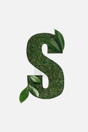 Foto de Vista superior de corte letra S sobre fondo verde hierba con hojas aisladas en blanco - Imagen libre de derechos