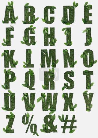Photo pour Lettres de l'alphabet anglais, faite d'herbe verte avec des feuilles fraîches isolés sur blanc - image libre de droit