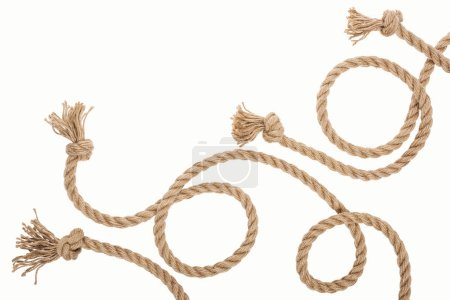 Photo for Brown jute and curled ropes with knots isolated on white - Royalty Free Image