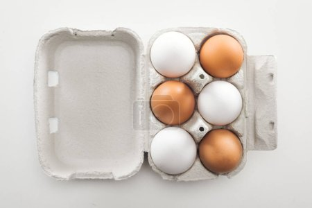 Photo for Top view of raw white and brown chicken eggs in carton box on white background - Royalty Free Image