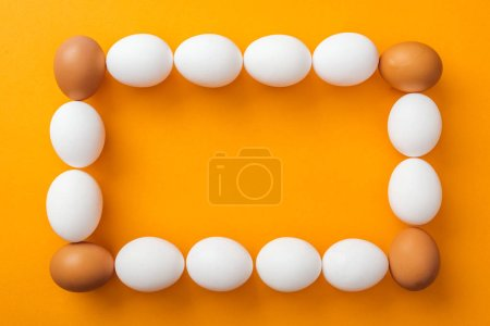 Photo for Top view of whole white and brown organic chicken eggs arranged in square frame on bright orange background with copy space - Royalty Free Image