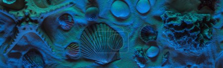 Photo for Panoramic shot of seashells, starfish, sea stones and coral on sand with blue light - Royalty Free Image