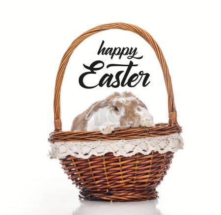 Photo pour Mignon lapin dans panier en osier isolé sur blanc avec joyeux lettrage de Pâques - image libre de droit