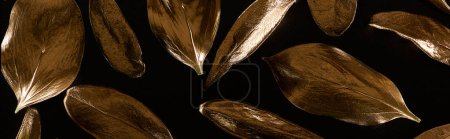 Photo for Panoramic shot of golden metal decorative leaves isolated on black - Royalty Free Image