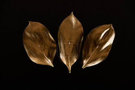 Photo for Top view of three golden metal decorative leaves isolated on black - Royalty Free Image